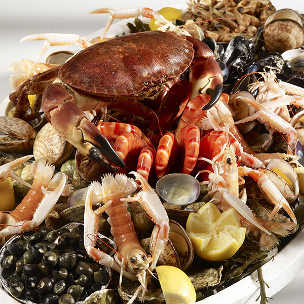 Notre Restaurant De L Armoric H 244 Tel R 233 Servez Votre S 233 Jour
