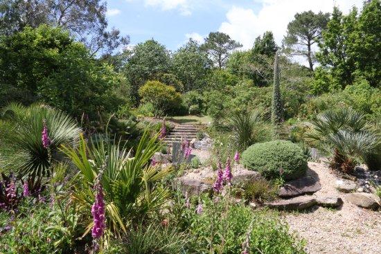 Découvrez le magnifique jardin botanique de cornouaille